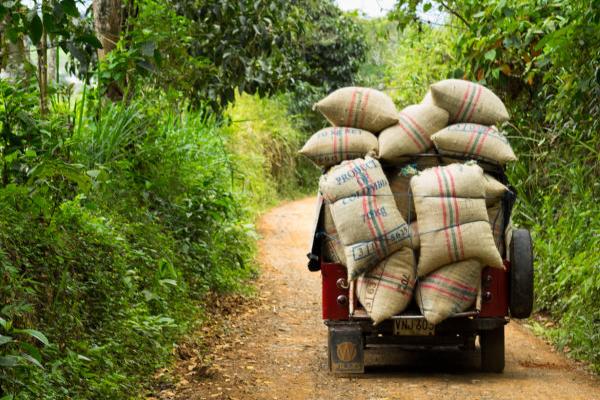 coffee jeep image